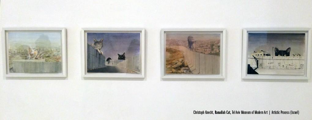 Ramallah Cat